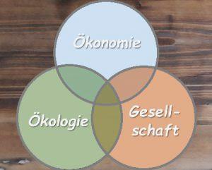 Drei Dimensionen der Nachhaltigkeit: Ökologie, Ökonomie und Gesellschaft.